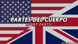 Partes del cuerpo en Inglés (Lección de vocabulario)