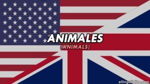 Más de 170 ejemplos de animales en inglés y español