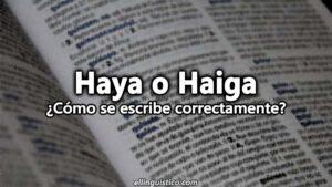 Haya o Haiga ¿Cómo se escribe y dice correctamente?